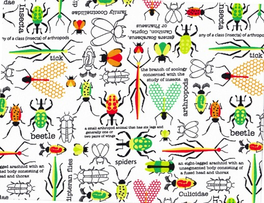 Bug City Beetles